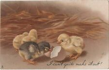 POSTCARD  ANIMALS  CHICKS  I can't quite make it out        Tuck