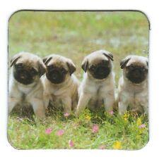 Frigorifero magnetico: quattro stracci-amici al Prato-FOUR Little Pugs