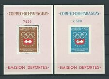 LATIN AMERICA - PARAGUAY - 1963 MI 48 et 49 BLOCS -  TIMBRES NEUFS** MNH LUXE
