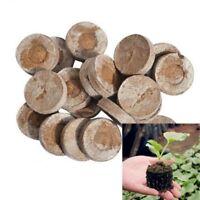JIFFY PEAT PELLETS GARDEN SEED PLANT STARTER PLUGS 5 - 50pcs -  Best Prices
