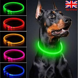 USB-Rechargeable Safety LED Light Up Dog Pet Collar Flashing Size Adjustable UK