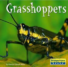 Grasshoppers (World of Insects)