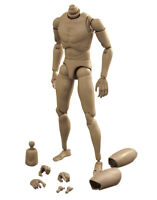 1/6 Male Body Narrow Shoulder 12inch Action Figure Nude Muscular Body Toys