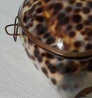 Vintage Tiger Cowrie Sea Shell Trinket Box Hand Set Brass Hinged Felt Lined