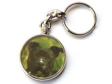 STAFFORDSHIRE BULL TERRIER Dog Puppy Quality Chrome Keyring Picture Both Sides