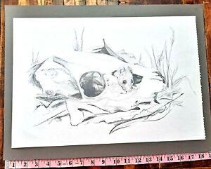 ORIGINAL VTG ART M. LUNDQUIST PENCIL DRAWING MOUSE DEER SKULL WILDLIFE LOW S/H
