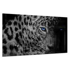 Tempered Glass Photo Print Wall Art Picture B&W Panther Leopard Prizma GWA0342