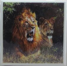 New listing Set of 4 - Handmade Natural Stone Ceramic Tile Drink Coasters - Lions 1- C