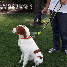 COOL DOWN DOGGIE REFRESHING MISTING LEASH BY HYPER PET/retail $40