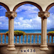 10x10 FT CP (COMPUTER PRINTED) PHOTO SCENIC BACKGROUND BACKDROP SW436