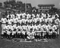 MLB 1945 Chicago Cubs Team Picture Black & White 8 X 10 Photo Picture