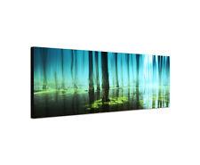 120x40cm Sumpf Moor Panorama Wurzeln Mystik düster Zwielicht Leinwand Bild Sinus