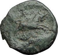 THESSALONICA in Macedonia 1stCenBC Authentic Ancient Greek Coin ZEUS BULL i63784
