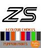FORD ZETEC S FOCUS FIESTA Spoiler window Bumper Vinyl Decal car Stickers x2