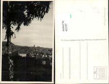 422197,Annaberg im Erzgebirge Totale Birke Baum