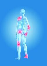 Celadrin Glucosamina Complesso PLUS 1000 MG 365 Capsule Articolazioni Artrite Mobilità