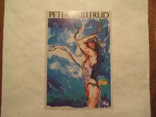 Peter Gullerud Advertising Continental Postcard