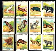 Animals With Fur 1932 Rare Pupier French Chocs Card Set Chinchilla Hermine Fox