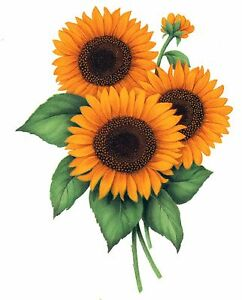 Sunflower Flower Floral Select-A-Size Waterslide Ceramic Decals Bx