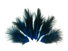 1 Dozen - Solid Turquoise & Black Rooster Chickabou Fluff Mini Feathers