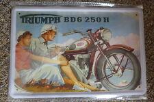 TrIumph BDG 250 H Tin Metal Sign Painted Poster Comics Book Superhero Wall Decor