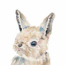 Patricia Pinto: Baby Bunny Keilrahmen-Bild Leinwand Hase lustig