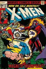 X-Men Marvel Magneto Triumphant  Poster 24x36