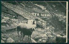 Biella Oropa Alpe Pissa cartolina QQ6445
