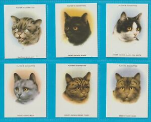 Players cigarette cards - CATS - Excellent condition.  Full set