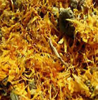 Egyptian Calendula Petals Calendula Officinalis Marigold Dried Flowers!