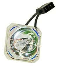 REPLACEMENT BULB FOR EPSON EX30 BULB ONLY