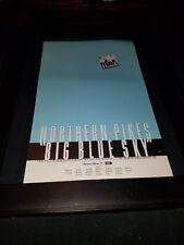 Northern Pikes Big Blue Sky Rare Original Radio Promo Poster Ad Framed!