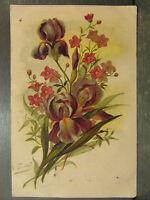 cpa illustrateur signée e guillot bouquet de fleurs iris