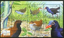 G818 SOLOMON ISLANDS 2004 #983 Birds. Water Hen etc SOUVENIR SHEET S/S Mint NH
