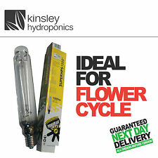 Motorisation Super HPS 600 W Bloom Flower Bulb Lamp Hydroponics