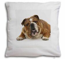 Animal Print Animal Print Velvet Decorative Cushions