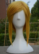The Legend of Zelda: Breath of the Wild Link Wig Styled Ponytail Cosplay Wig