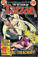 Tarzan Comic Book #219, DC Comics 1973 VERY FINE/NEAR MINT