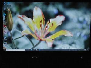 """Dell Vostro 3700: 17.3"""" w/WebCam, HDMI, Intel 2.4GHz, 4GB, 500GB, DVD-RW, Win 10"""