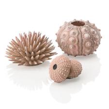 Oase biOrb Sea Urchins Natural 3 Pack Decoration Ornament Fish Tank Aquarium