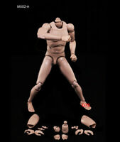 "1/6 Male Body Model Toy Flexible Standard Figure Muscle for 12"" Action MX02-A"