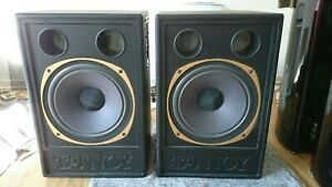 Tannoy- Westminster Driver 3839, in original Tannoy Hardcase - 15 Zoll