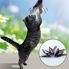 """Quality 5 REFILLS for Da Bird feather Cat Toy Kitten Interactive Toys 8.7"""""""