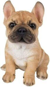 Vivid Arts - Golden French Bulldog Puppy Pet Pals