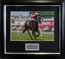 BLACK CAVIAR AND LUKE NOLEN PHOTO SIGNED AND FRAMED HORSE RACING MEMORABILIA