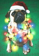 Christmas Sweater Pug Doggie Size 2XL Ugly Sweater Green Stretchy Plus Size