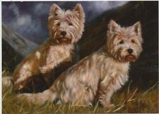 West Highland Westie Terrier Perro Perrito Animal Lindo Pintura Tarjeta De Cumpleaños