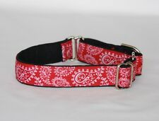 """1"""" Small (whippet) Martingale Dog Collar Red Paisley Ribbon on Black Backing"""