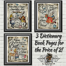 Wall Decor Alice in Wonderland, Nursery Wedding Theme Party, Dictionary