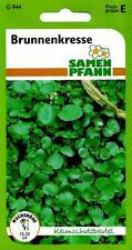 Brunnenkresse mehrjährig - Wasserkresse Kräuter Gewürz - Saatgut Kresse Samen